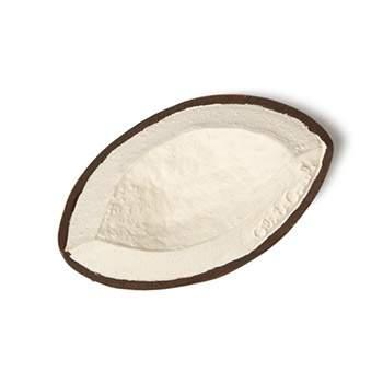 Coco la noix de coco en latex d'hévéa Oli & Carol