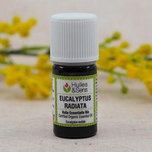 Huile essentielle biologique d'eucalyptus radiata HEBBD